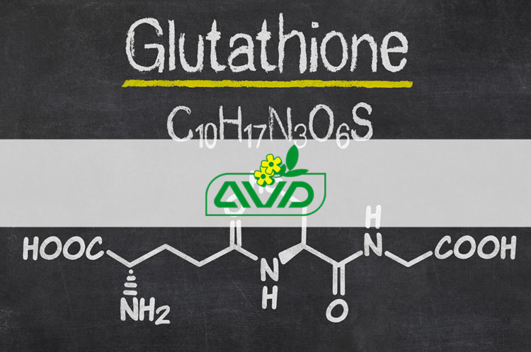 Glutatione vs precursori